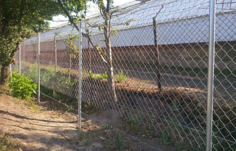 Забор сделанный из сетки рабицы своими руками 232